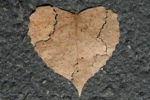 Superación de la pérdida de un ser querido